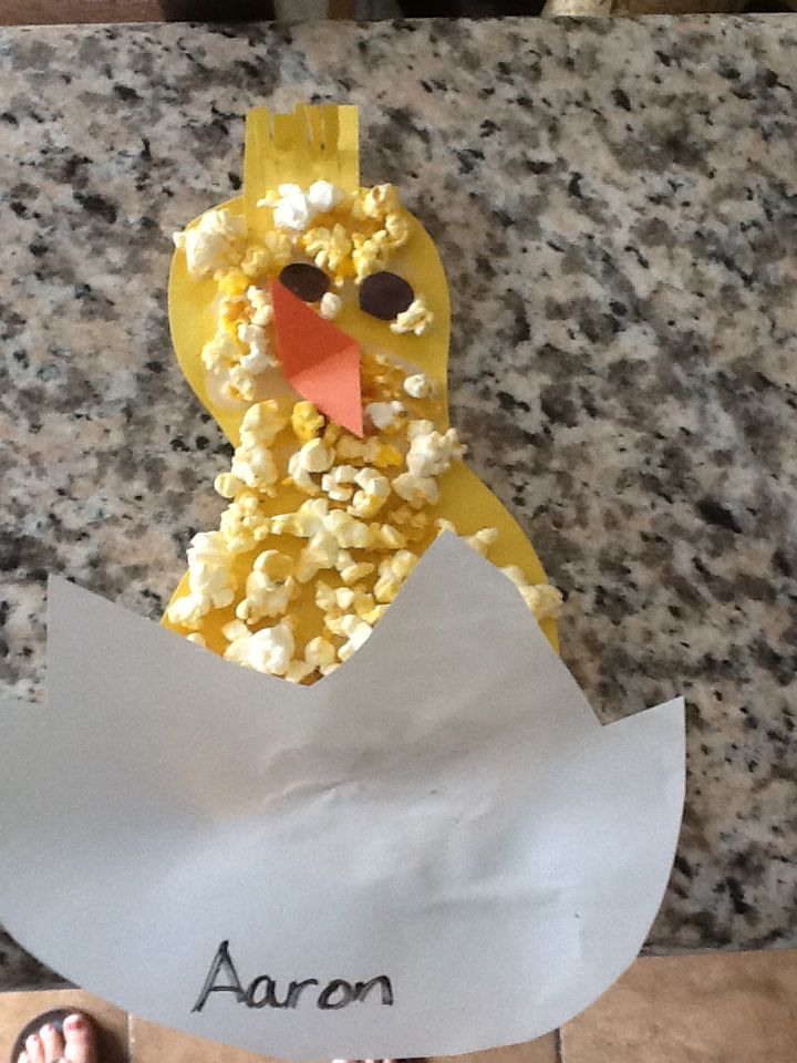Baby chick .. Spring project