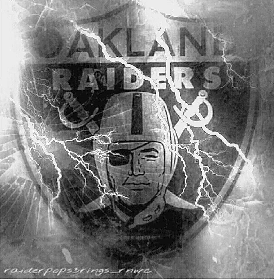 bc1f8c9b6 NFL Oakland Raiders Sun Shade Auto Car Interior Window Roll Up Sun Screen
