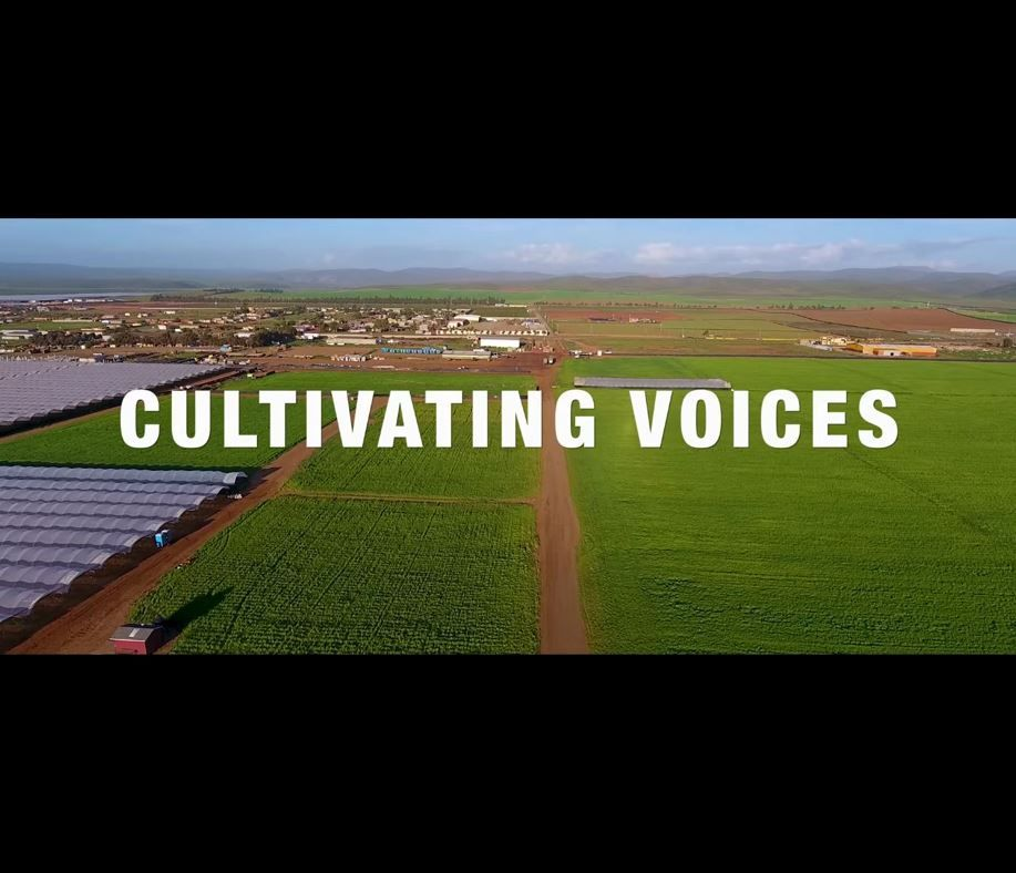 #ImprovingLives for farmworkers is the subject of Cultivating Voices, a new four-part video series from Equitable Food Initiative. Check out EFI's October newsletter at http://conta.cc/2xA2idV to watch the short series and hear from some of our team about how EFI works to #CultivatePositiveChange in their lives.