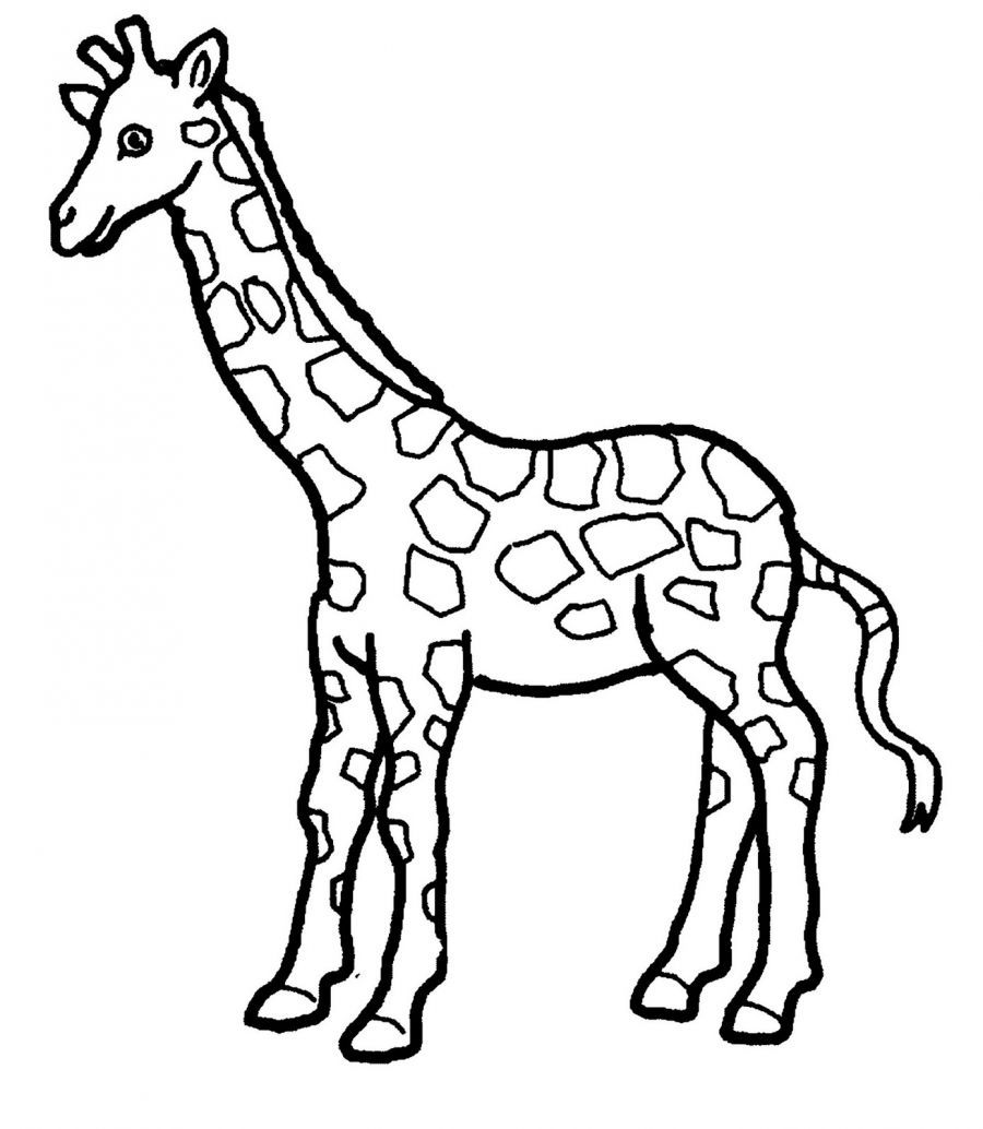 giraffe coloring page 01 - Zoo Animal Coloring Pages