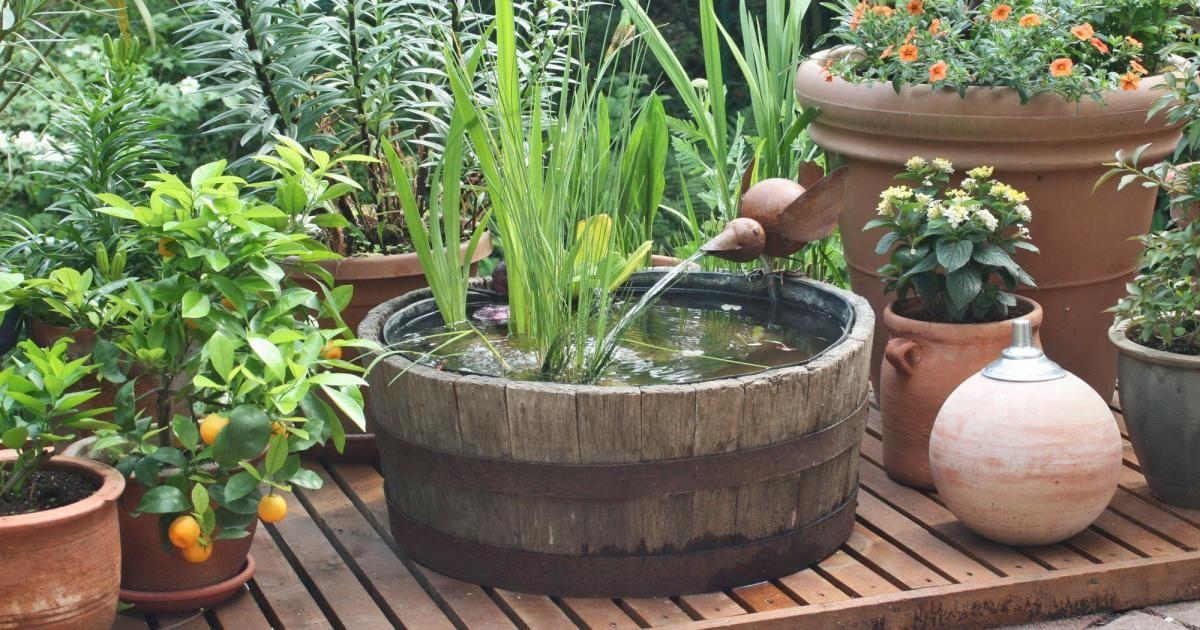 Gerade Für Kleine Gärten Sind Mini Teiche Eine Einfache Und Flexible  Alternative Zum Großen Gartenteich. Wir Stellen Schön Gestaltete Varianten  Vor Und ...