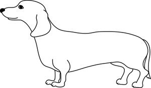 Weiner Dog Clipart Image Cute Adult Weiner Dog Or Dachshund In