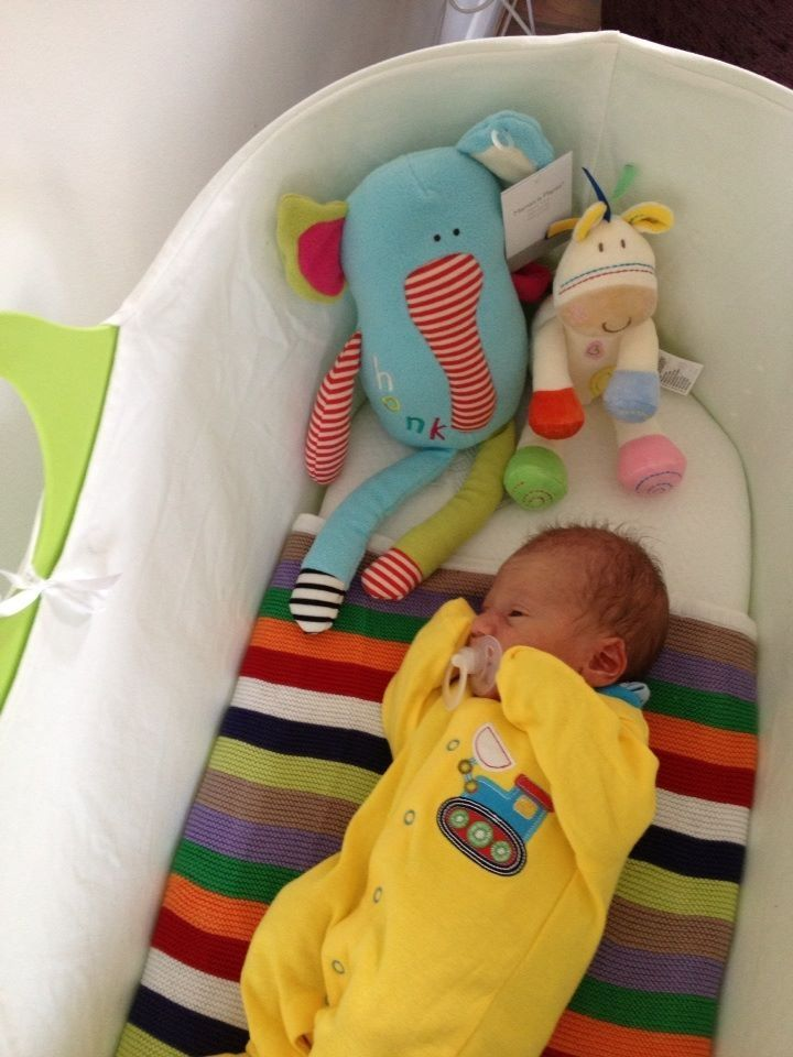 A Gorgeous Photo Of A New Born Baby Boy In His Lovely Apple Moba Moses  Basket