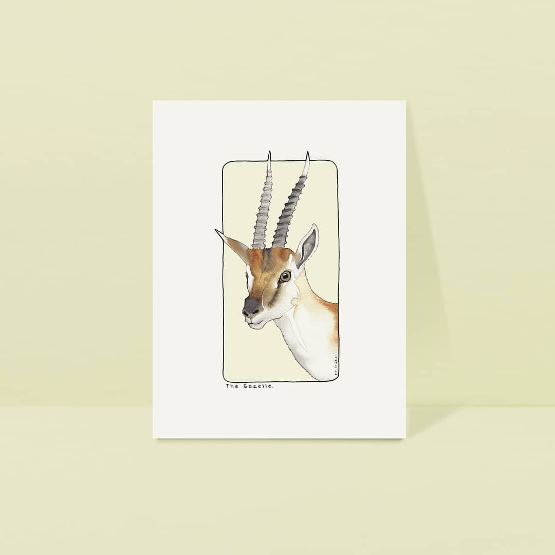 Salut Jolie Gazelle Aquarelle Watercolor Acuarela