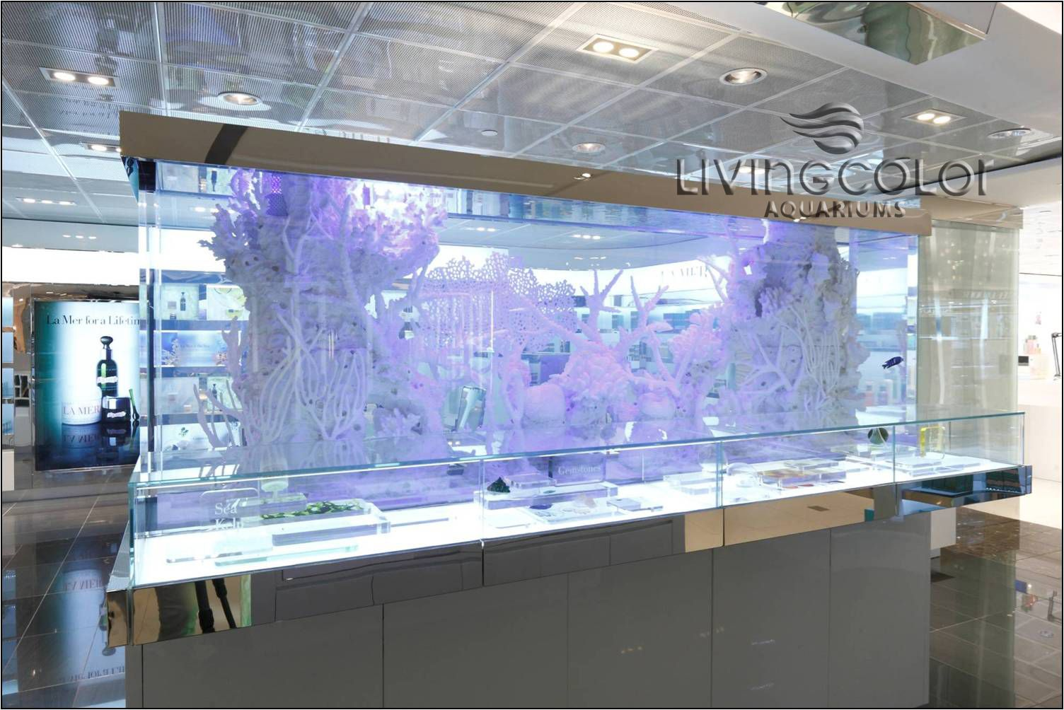 Fish tank dimensions - White Coral Fish Aquarium La Mer Locations Worldwide Dimensions X X 250 Gallons