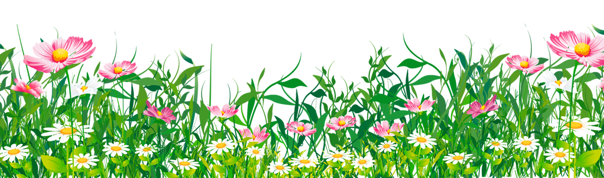 Grass with Flowers PNG Clipart Grass