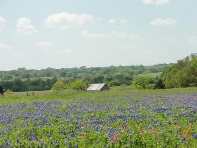 Mount Vernon Road, Brenham TX - Trulia