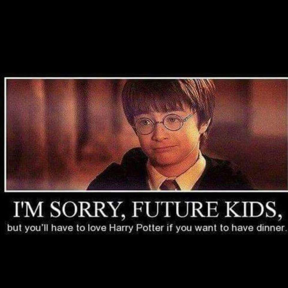 Harry Potter Memes 017 Sorry Kids Dinner Harry Potter Jokes Harry Potter Fanfiction Harry Potter Obsession