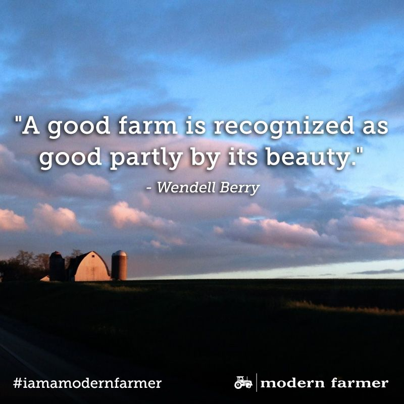 Farming Quotes Gorgeous 10 Quotes That'll Help You Fall Back In Love With Farming  Farming . Decorating Design