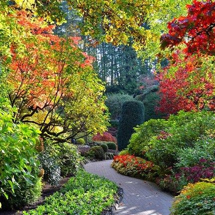 Garden Travel Destinations: The Butchart Gardens. Discover Beautiful Gardens To Visit, Browse Worldwide Trips And Cruises, Find Local Tours, Tours