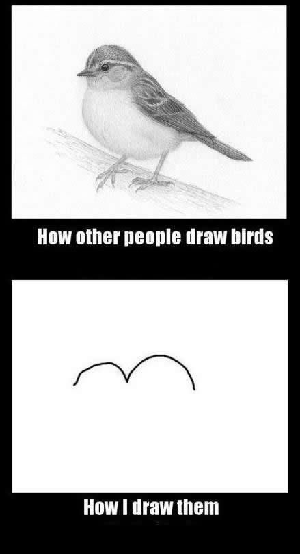 Drawing A Bird Funny Pictures Bones Funny Humor