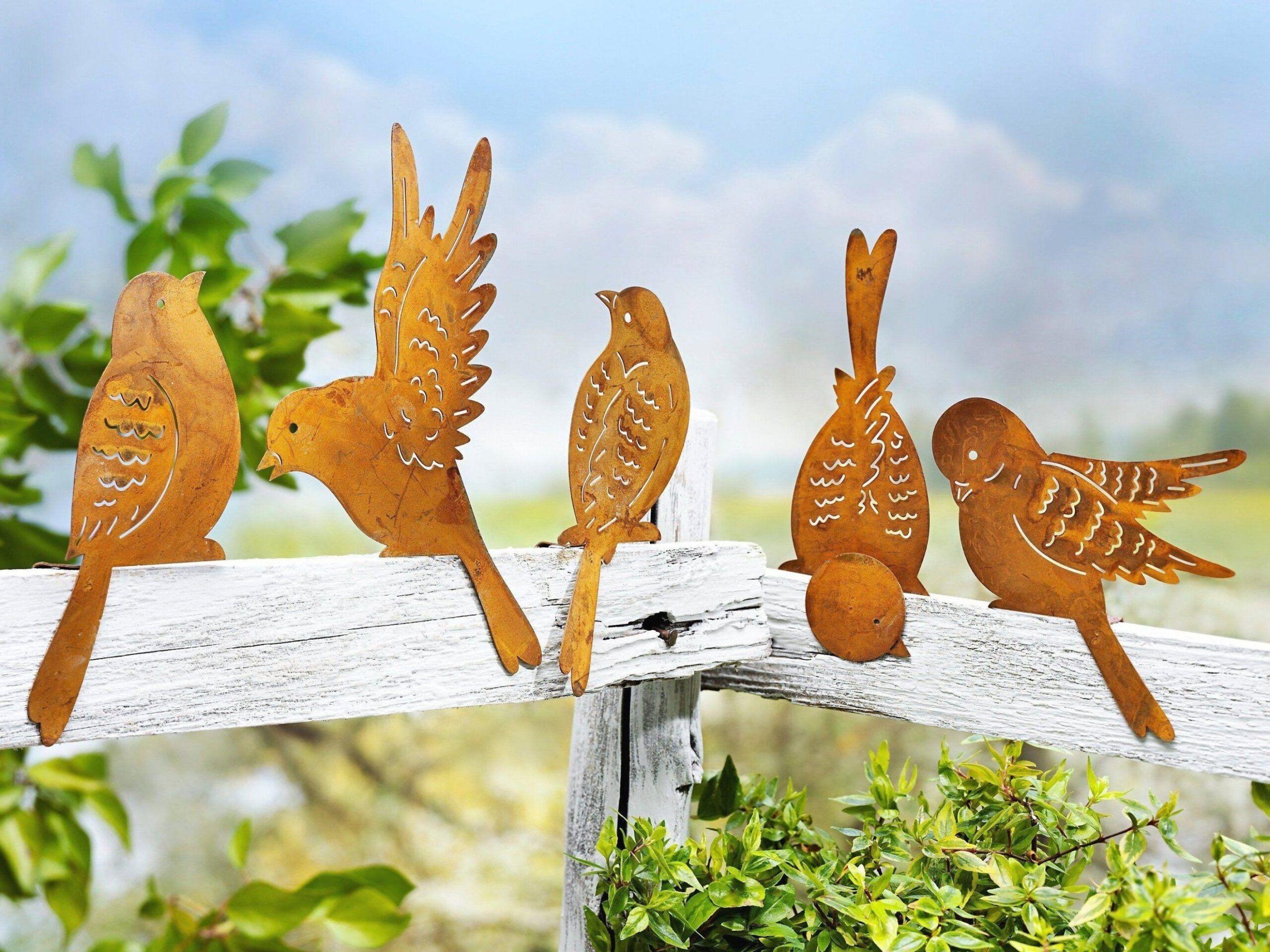 Muntere Vogel Parade Diese F Nf Piepm Tze Hat Man Gerne Zu Besuch Sie Zieren Garten Pflanzen Landschaftsplan Pflanzkasten