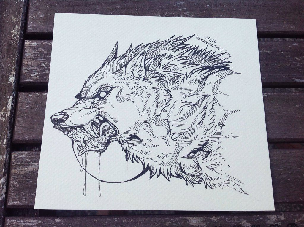 Lineart Wolf Tattoo : Yesterday was 'draw a werewolf' day on twitter and all long my