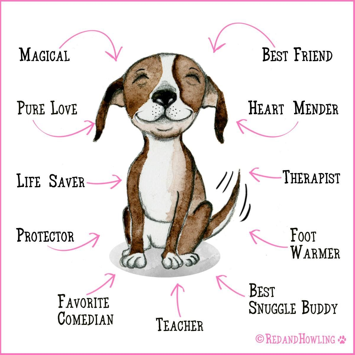 Dog Quotes by Susie White Dogs, Puppies and kitties, Beagle
