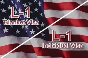 L1 Blanket Visa Interview Questions - 7 500 Photo Blanket