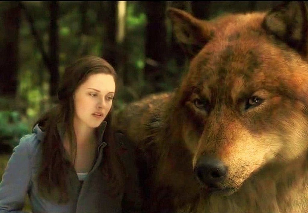 Eclipse Wolves in 2019 | fav  movie/shows/games pics