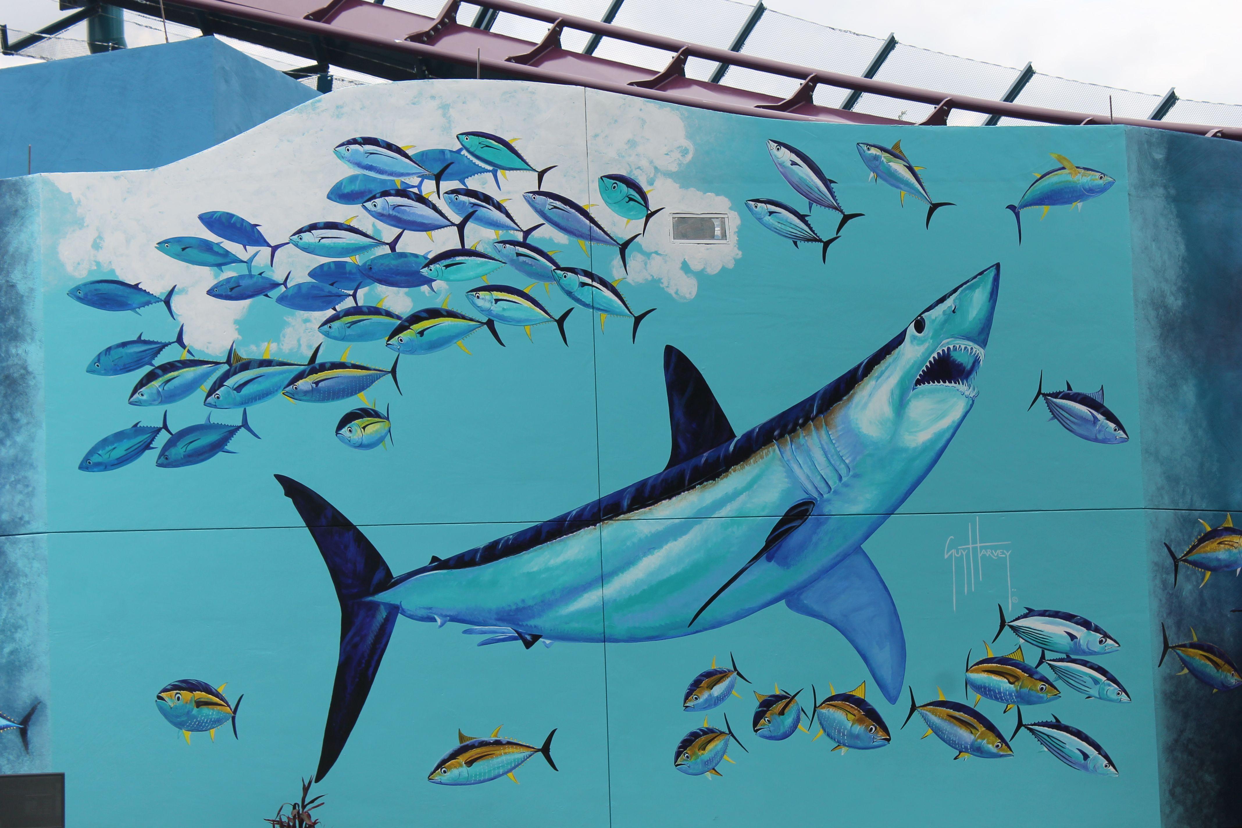 Shark Wreck Reef SeaWorld Orlando Mako