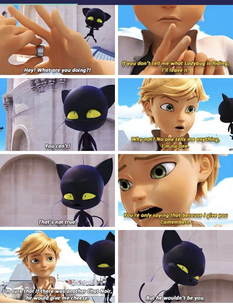 Aww Plagg Cares About Him Miraculous Ladybug Funny Meraculous