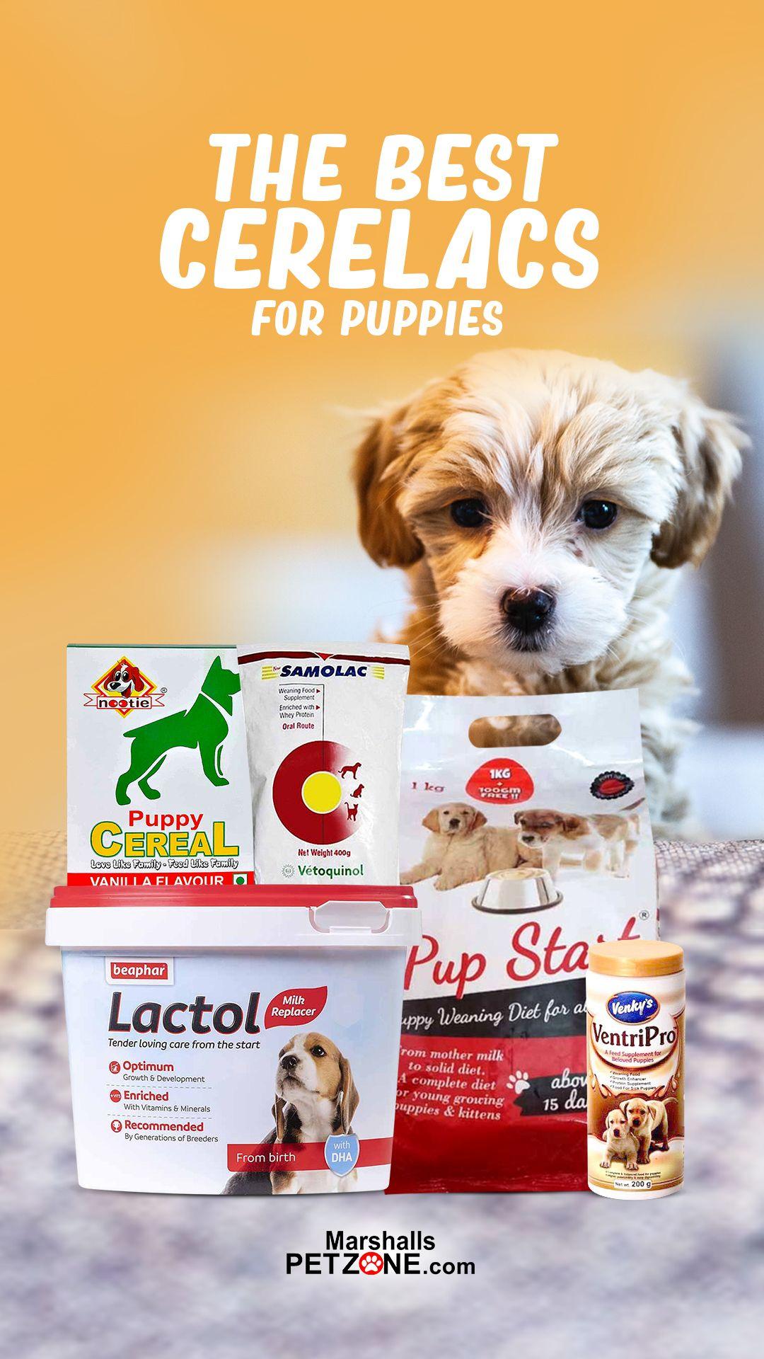 Pin On Pet Food Treats