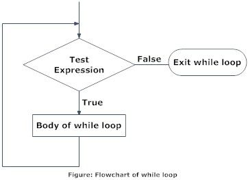 Describe While Loop In C With Examples While Loop C