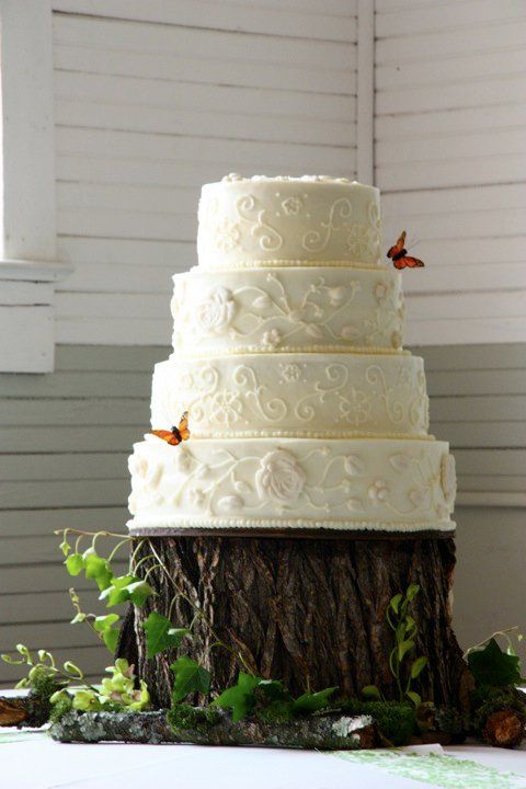 Inspiration for my cake @Diana Sutton photo complimentary of @Amanda Patterson