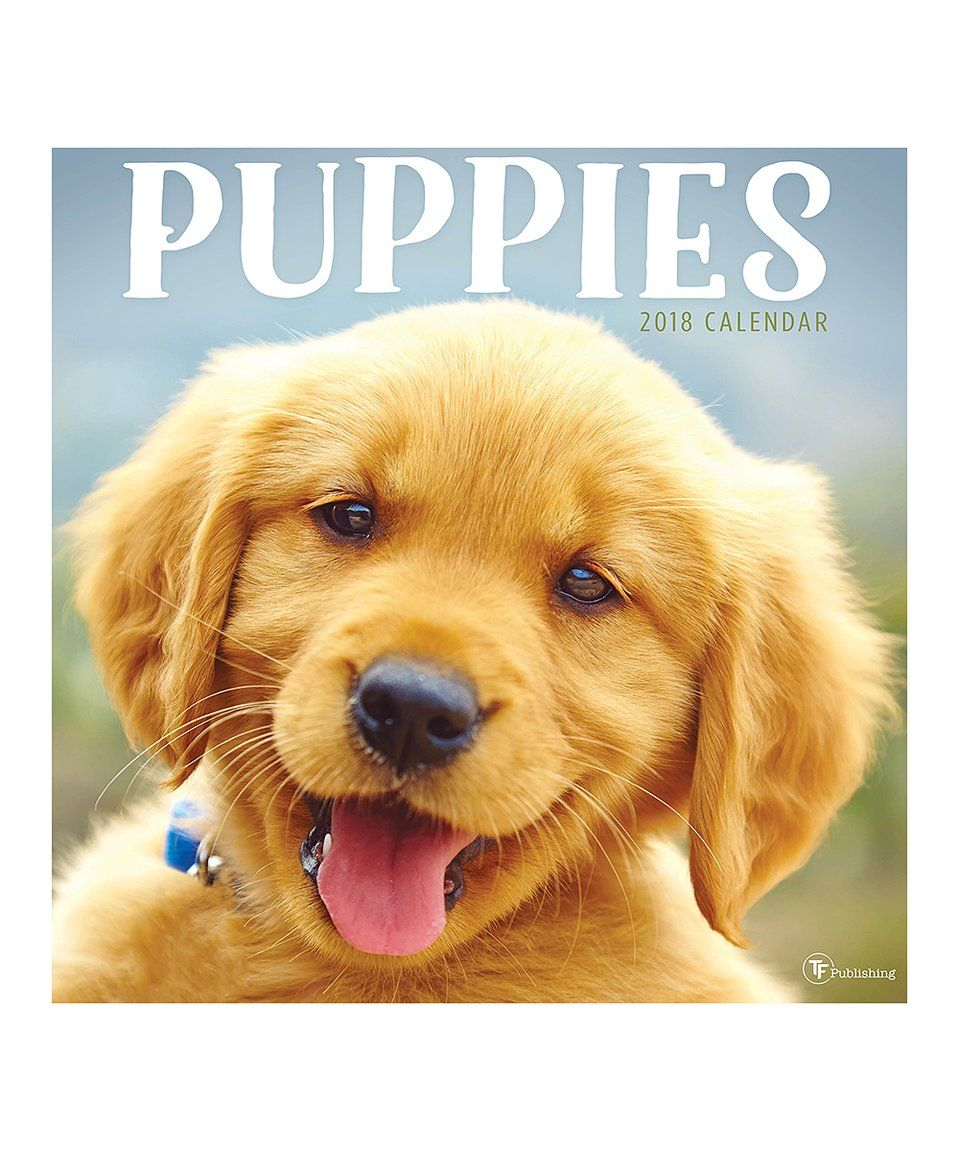 Loving This Tf Publishing Puppies 2018 Wall Calendar On Zulily