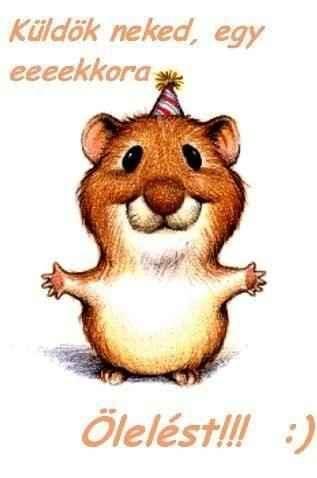 vicces névnapi képek boldog névnapot cuki   Google keresés | Animal love | Pinterest  vicces névnapi képek