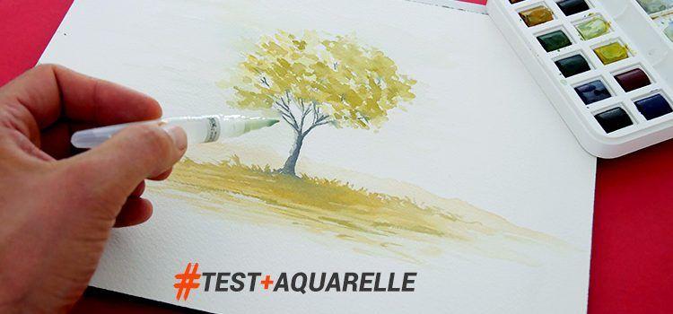 Peindre Un Arbre A L Aquarelle Facilement Apprendre A Dessiner