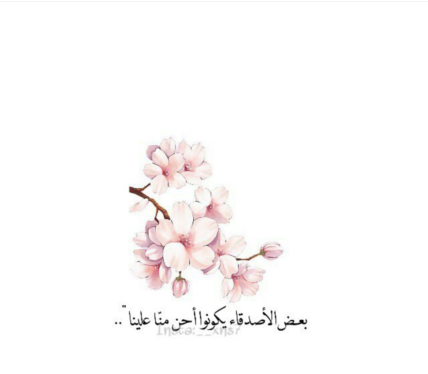 Pin By Kim Rora On ص Flower Illustration Love Words Fall Pictures