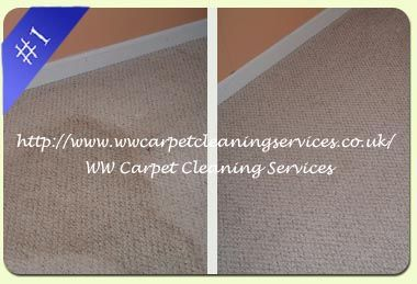 Ww Carpet Cleaning