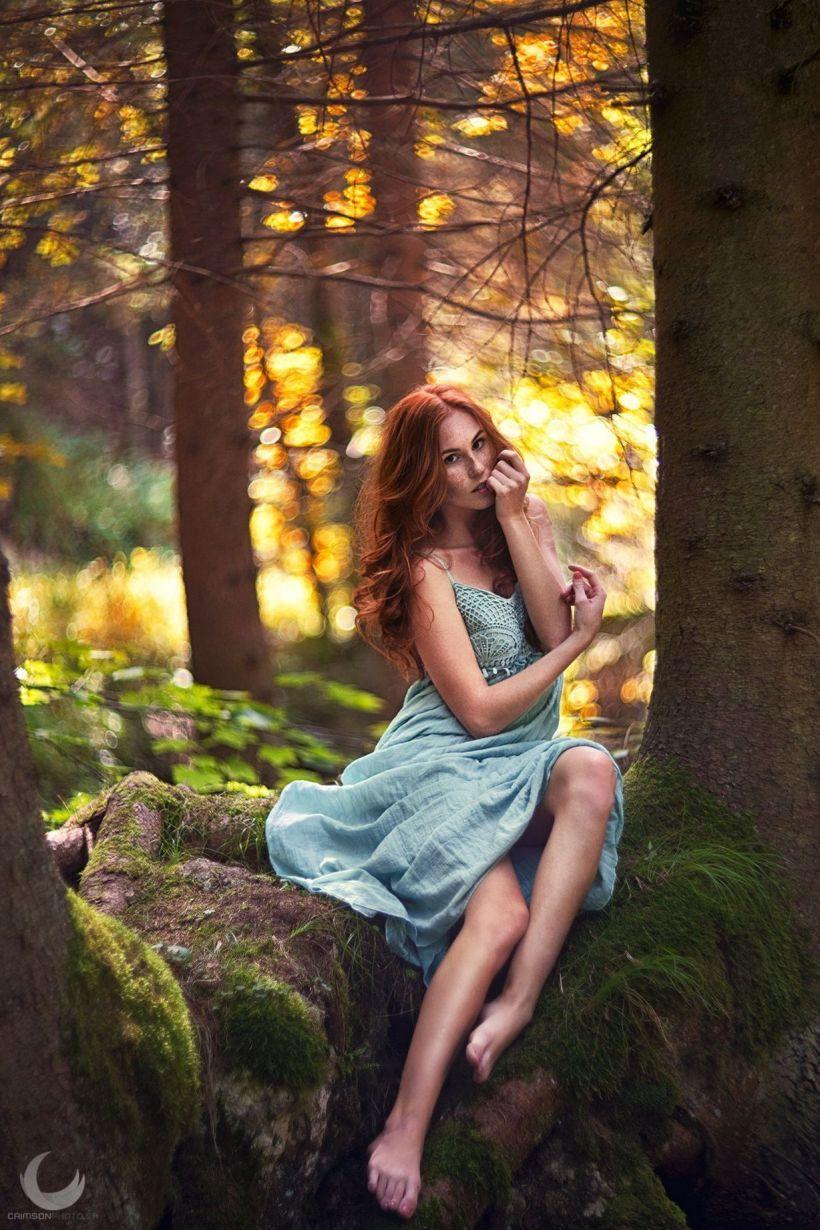 сам надрал варианты фотосессий в лесу полон прелести