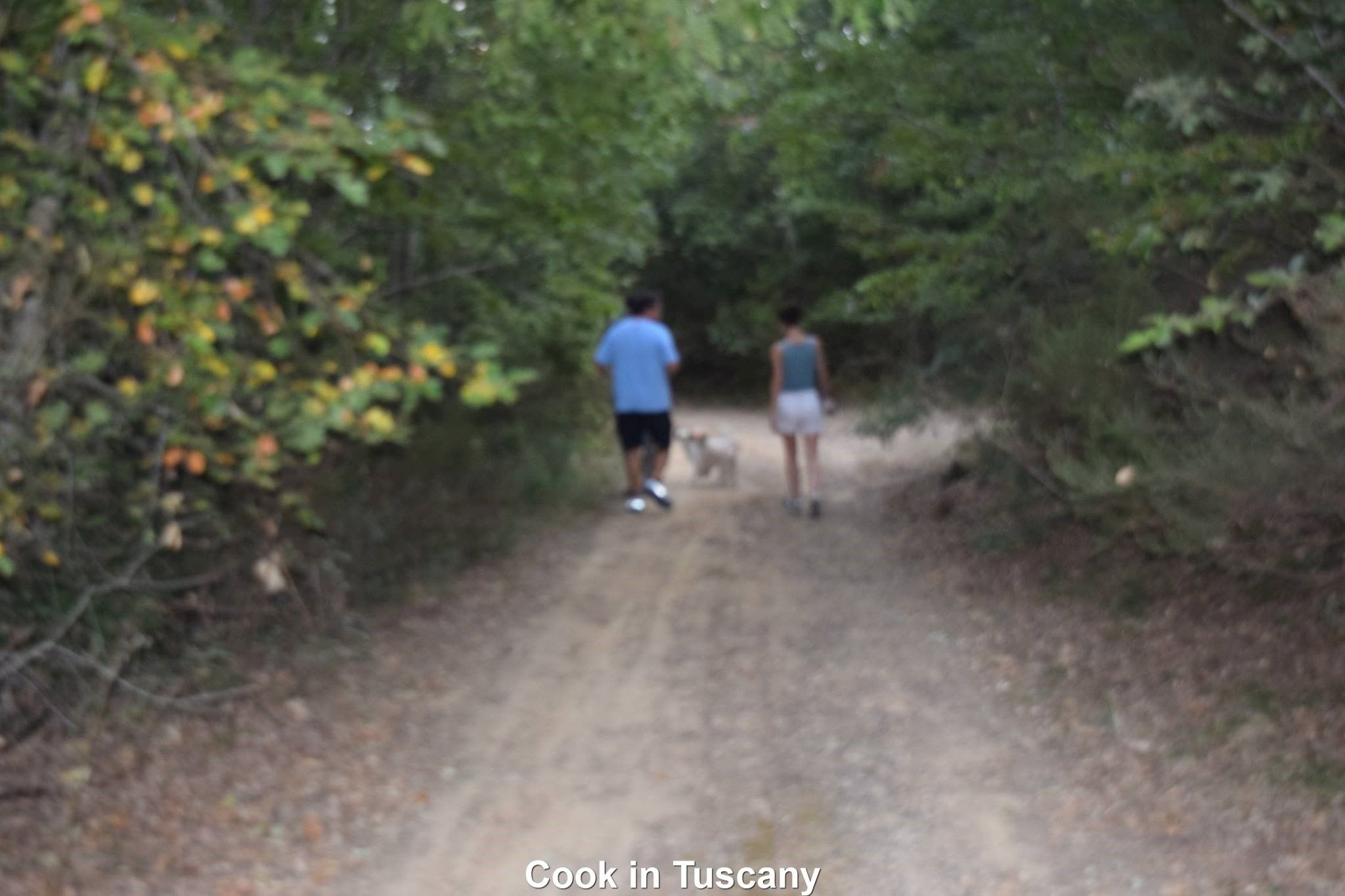 Walking in Tuscany.  www.cookintuscany.com   #tuscany #montefollonico #cookintuscany #Italy #cookingschool #culinary #cooking #school #montepulciano #cookery #cucina #travel #tour #trip #vacation #pienza #cook #tuscan #cortona #allinclusive