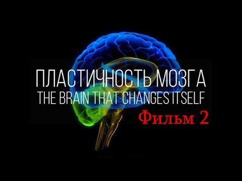 Как поменять мозг (Нейропластичность Мозга) / фильм 2 - YouTube