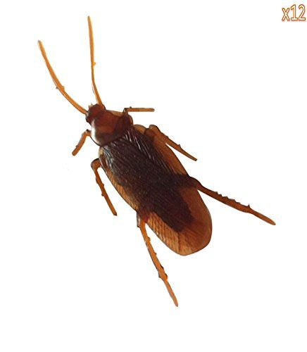Leegoal 12- Fake Roaches Prank Novelty Cockroach Bugs Look Real - bulk halloween decorations
