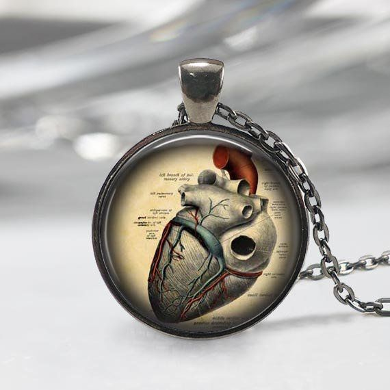 Steampunk Jewelry Anatomy Pendant Goth Nurse Charm Anatomical Heart Necklace