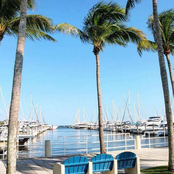 Überall Boote in Coconut Grove #coconutgrove #miami #travel #somiami #visitmiami #grovites #sailing #watersports #marina