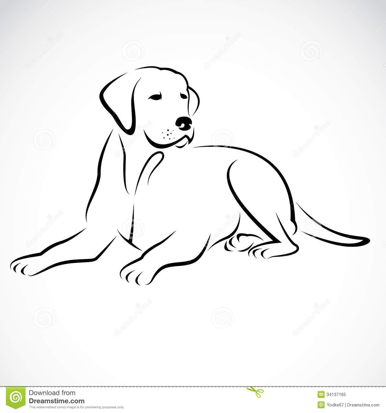 Vector Image Of An Dog Labrador - Download From Over 38 Million High ...