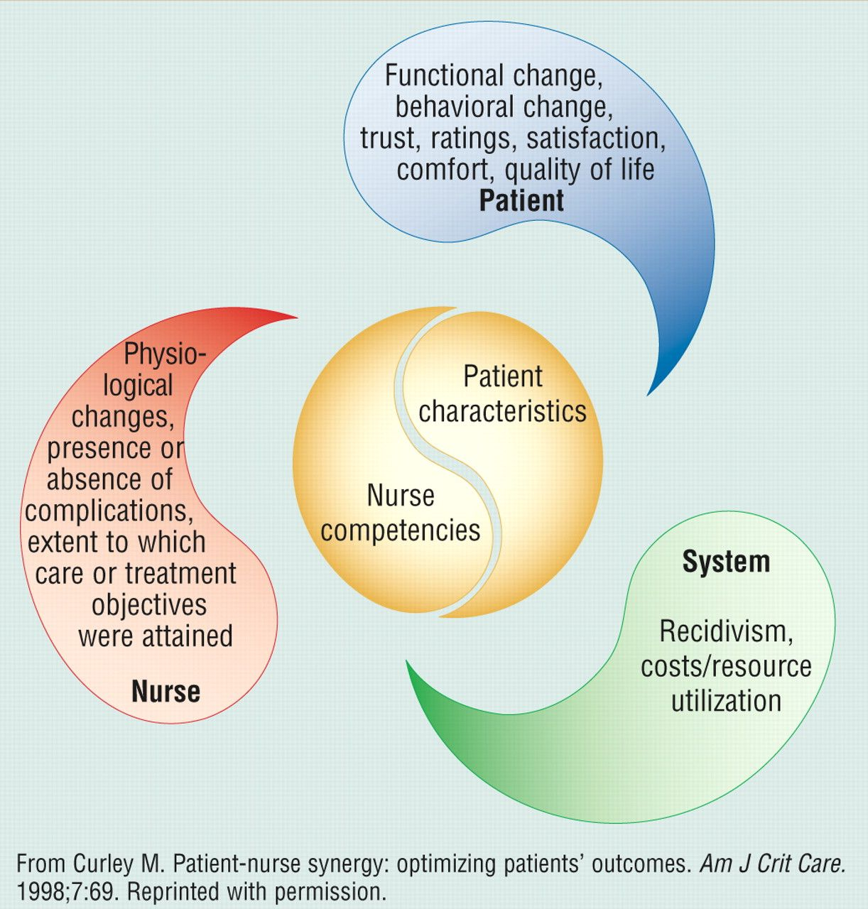 extending the synergy model to preceptorship