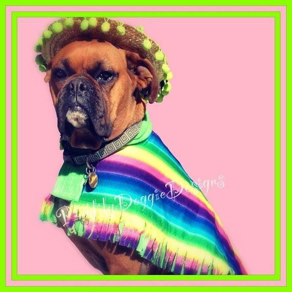Dog Cinco De Mayo Costume Clothes Mexican By Pinklilydoggiedesign