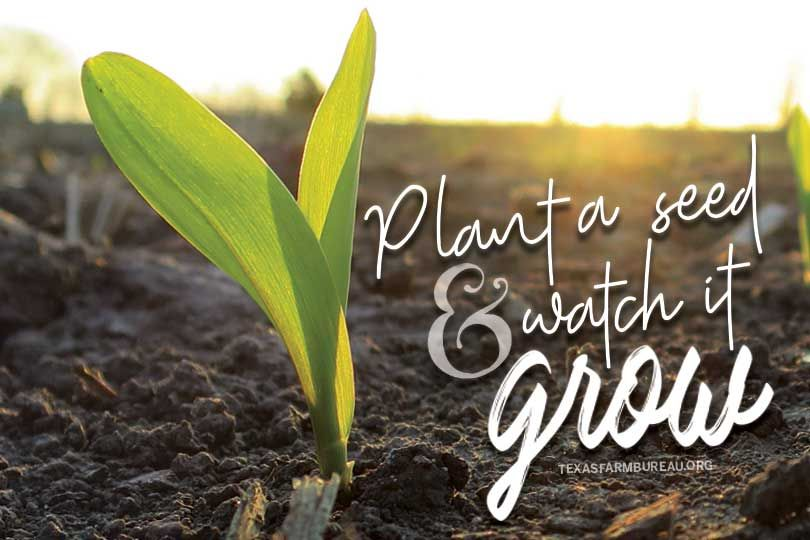 Plant A Seed And Grow An Understanding Of Agriculture Thats The