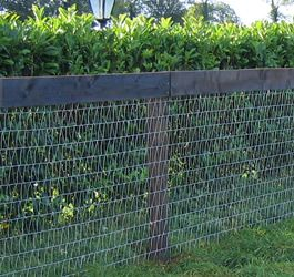 V Mesh Horse Fencing Installed With Wood Post Fencing