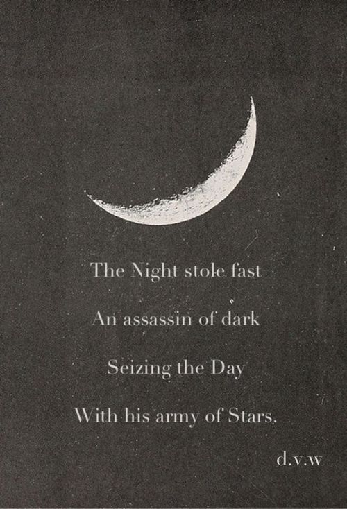 The Night sole fast An assassin of dark Seizing the day ...