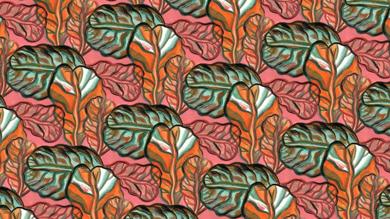 Great Seaside Patterns by Andrés Sandoval