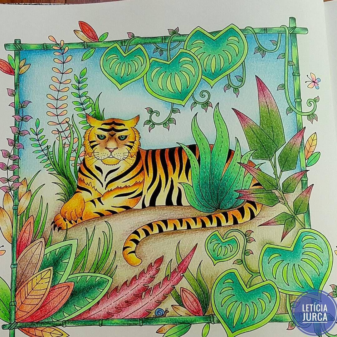 magical jungle johanna basford casadaloiseshop johannabasford