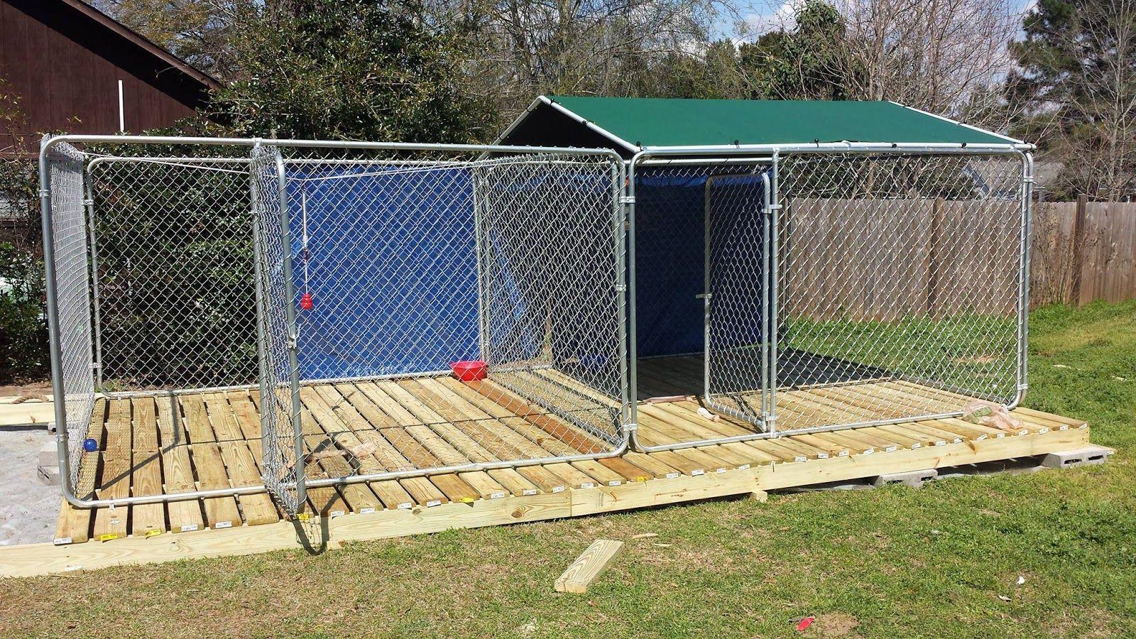 Dog kennel setups and designs dog kennel kennel