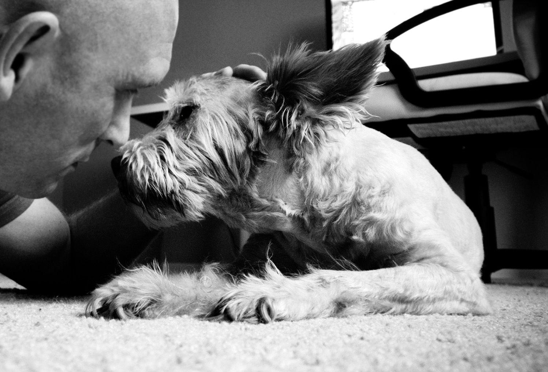 Unconditional Love! | Mans best friend, Best friends, Man