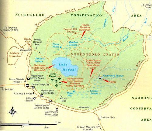 Ngorongoro crater safari? | Ngorongoro | Africa travel, Wonders of
