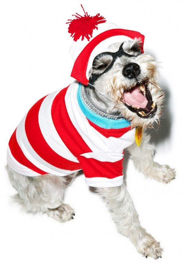 wheres waldo dog costume
