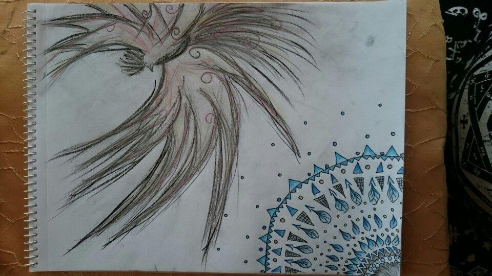 Drawing bird