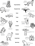 Ask A Biologist, Coloring Page, Biome Matching Game